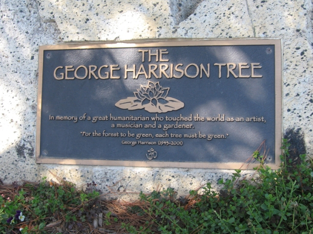 George Harrison tree